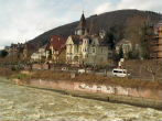 Neckar River houses